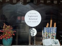 Eaglemont Botanical – Pop Up Shop